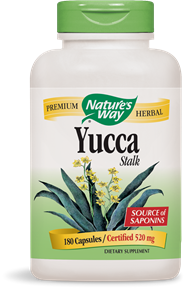 Yucca supplements